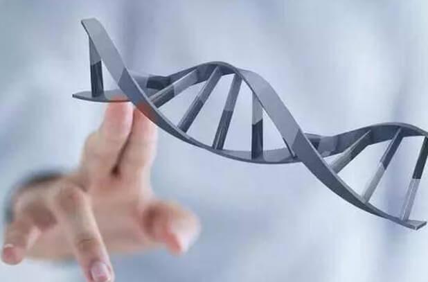 遗传病基因检测